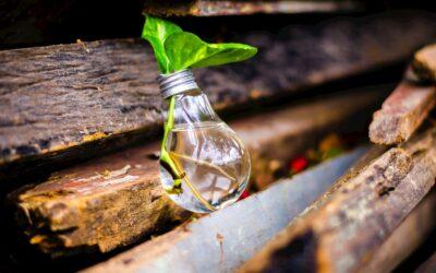 Quando l'innovazione diventa sostenibilità per la tua azienda?